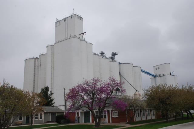 This T.E. Ibberson elevator, foreground, keeps company with a Tillotson elevator, right, in Dallas Center, Iowa. Photo by Kristen Cart