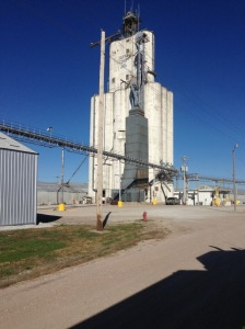 A view of Tillotson Construction Company's Aurora South elevator, as seen Nov. 2, 2014, by Collin Quiring.